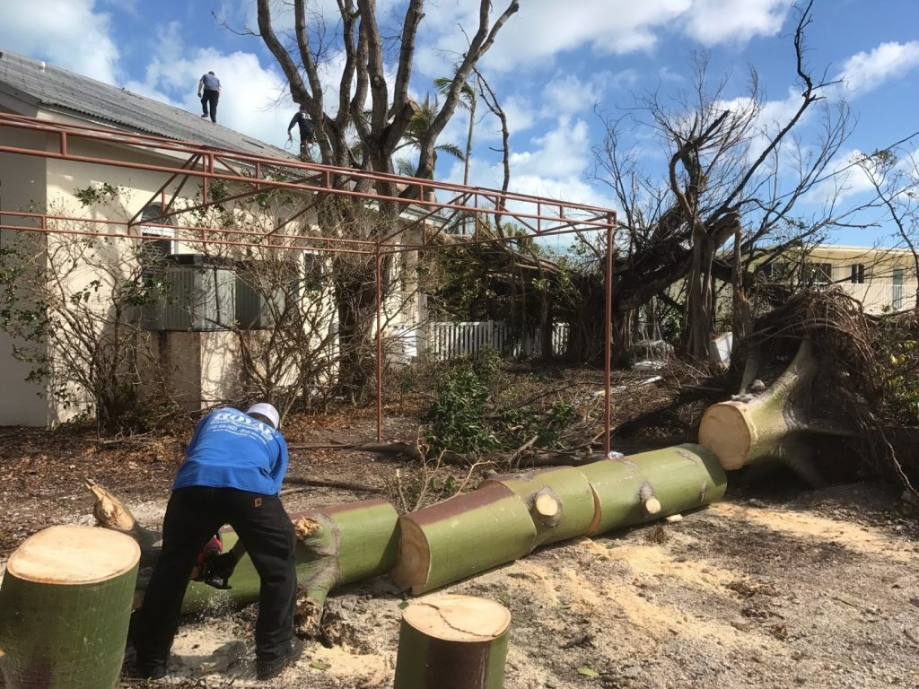 Cleanup After 2017 Hurricanes